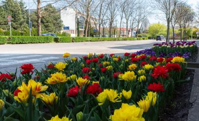 Tavasz, némi lehűléssel