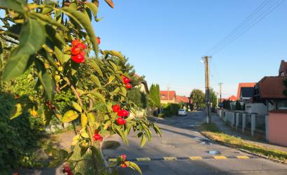 Ősz, majd visszatérő nyár