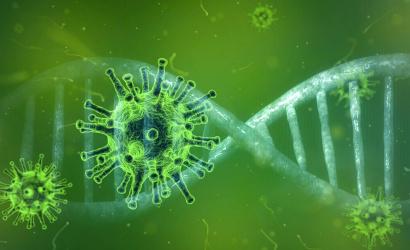 Krajčí: Terjed a fertőzőbb brit vírustörzs