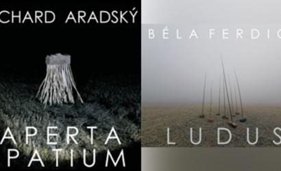 Pénteken lesz az idei első kiállítás a Kortárs Magyar Galériában – virtuálisan