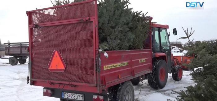 Embedded thumbnail for Fontos téli feladatokat lát el a közterület-fenntartó vállalat