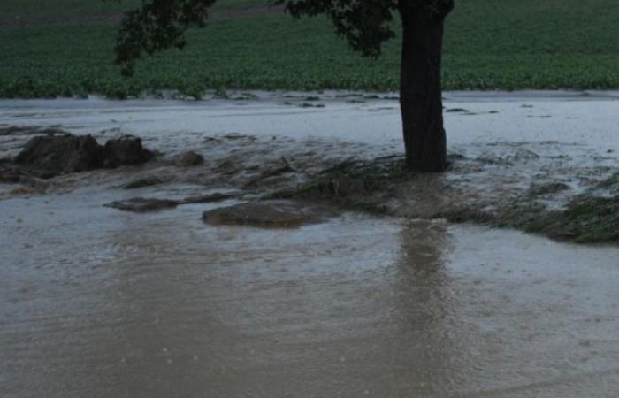 Viharok és áradásszerű esőzések várhatók