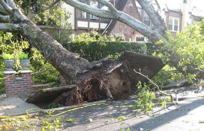 A tegnapi viharos szél megdolgoztatta a tűzoltókat