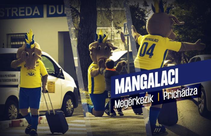 Videó: Mangalaci megérkezik