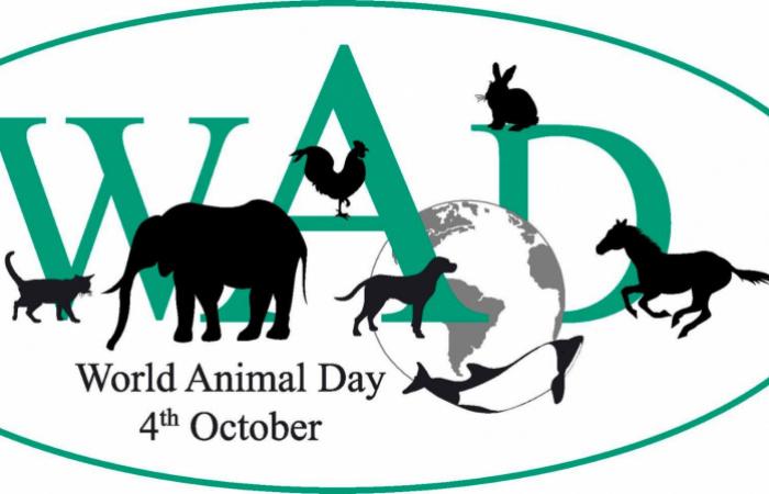 World Animal Day - Az Állatok Világnapja
