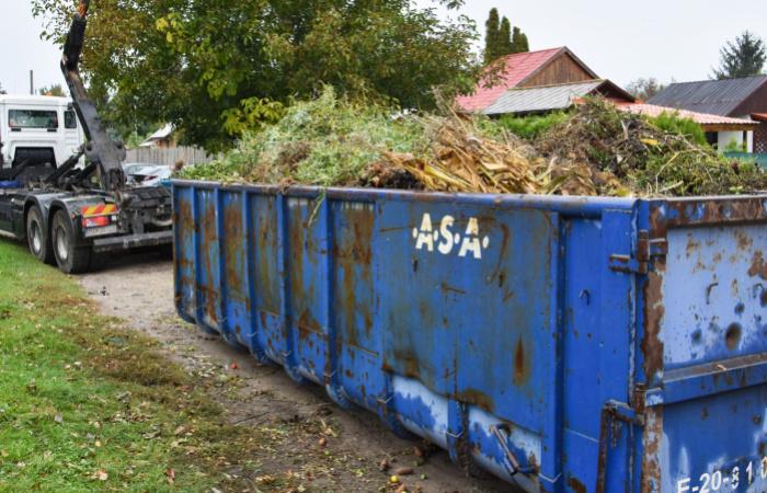 Elszállították a zöld hulladékot a kiskertes övezetekből