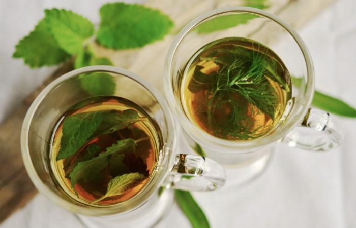 Néhány gyógynövény, mely segít a megfázásos tünetek enyhítésében