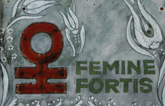 Felvidéki női példaképet keresnek az Erős Nők