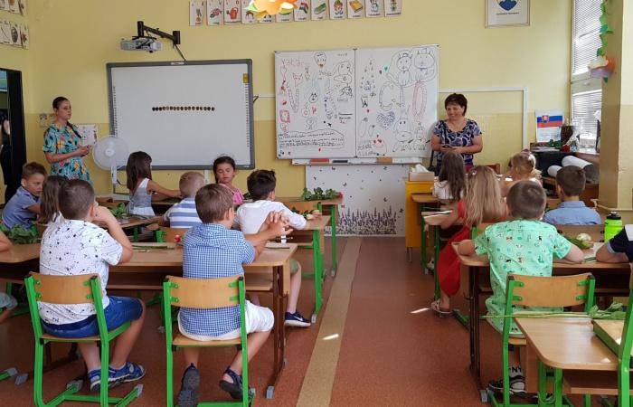 Fokozatosan megnyitják az iskolákat és az óvodákat, s el kell kezdeni a járóbeteg-ellátást is