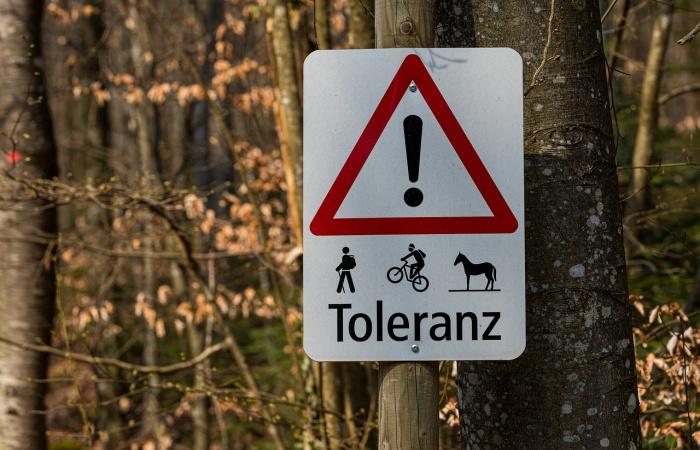 Mit gondolnak a szlovákiai kisebbségben élő gyerekek a toleranciáról?
