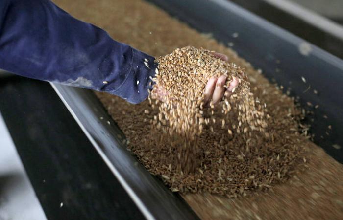 A világpiacon is emelkednek az élelmiszerárak
