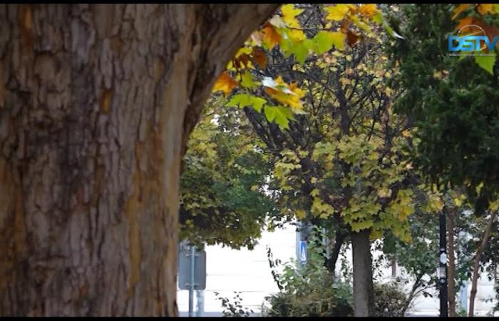 Embedded thumbnail for A dunaszerdahelyi ősz sokféle arca