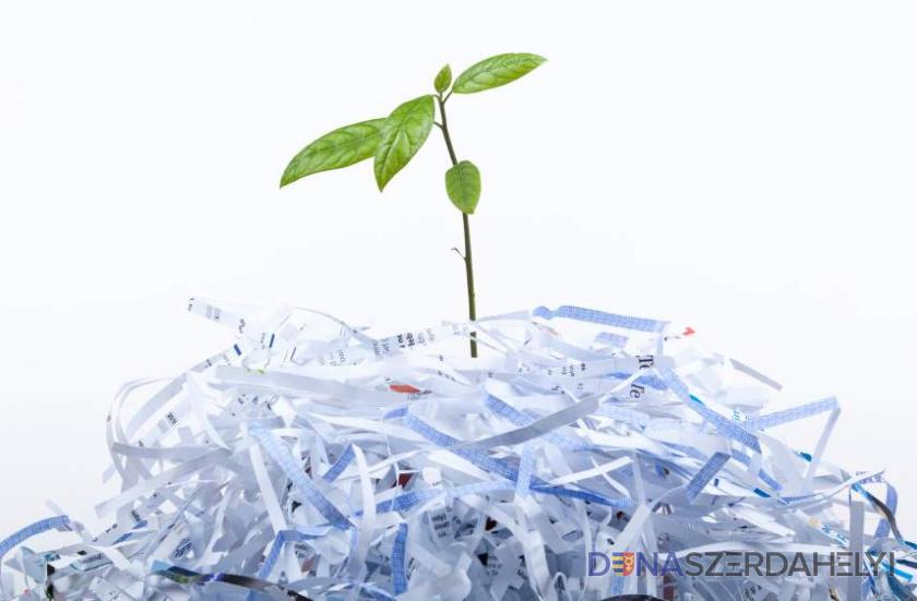 Hétfőn szállítják el a szeparált papírhulladékot a családi házas övezetekből
