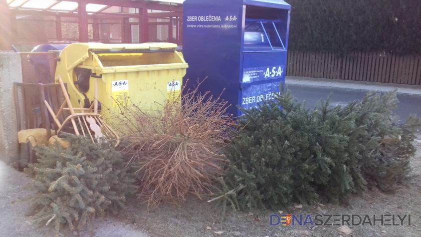Elkezdődött a kihelyezett karácsonyfák elszállítása
