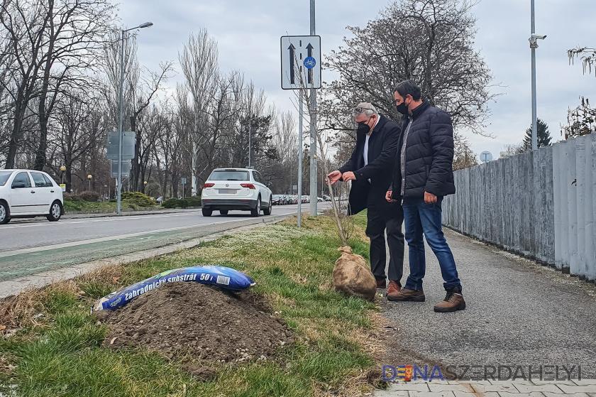 A Jesenský utcai faültetéssel indult az idei zöldprogram