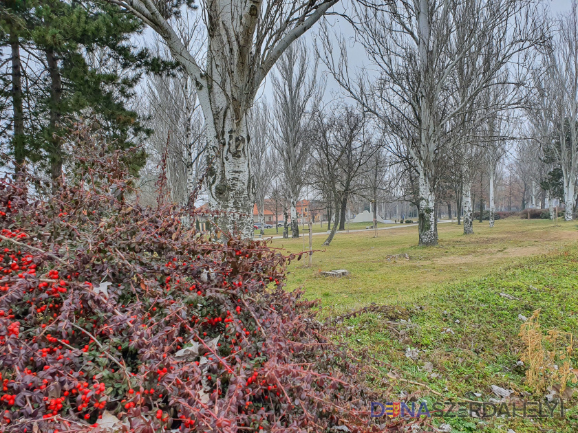 Tavasz, mely a ködbe veszhet
