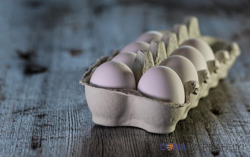 Mit (t)együnk tojás helyett?